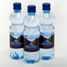 500ml Bottle (2x24)